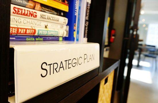 Purpose and strategic plan
