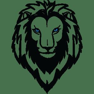 Tom Nikkola Site Icon