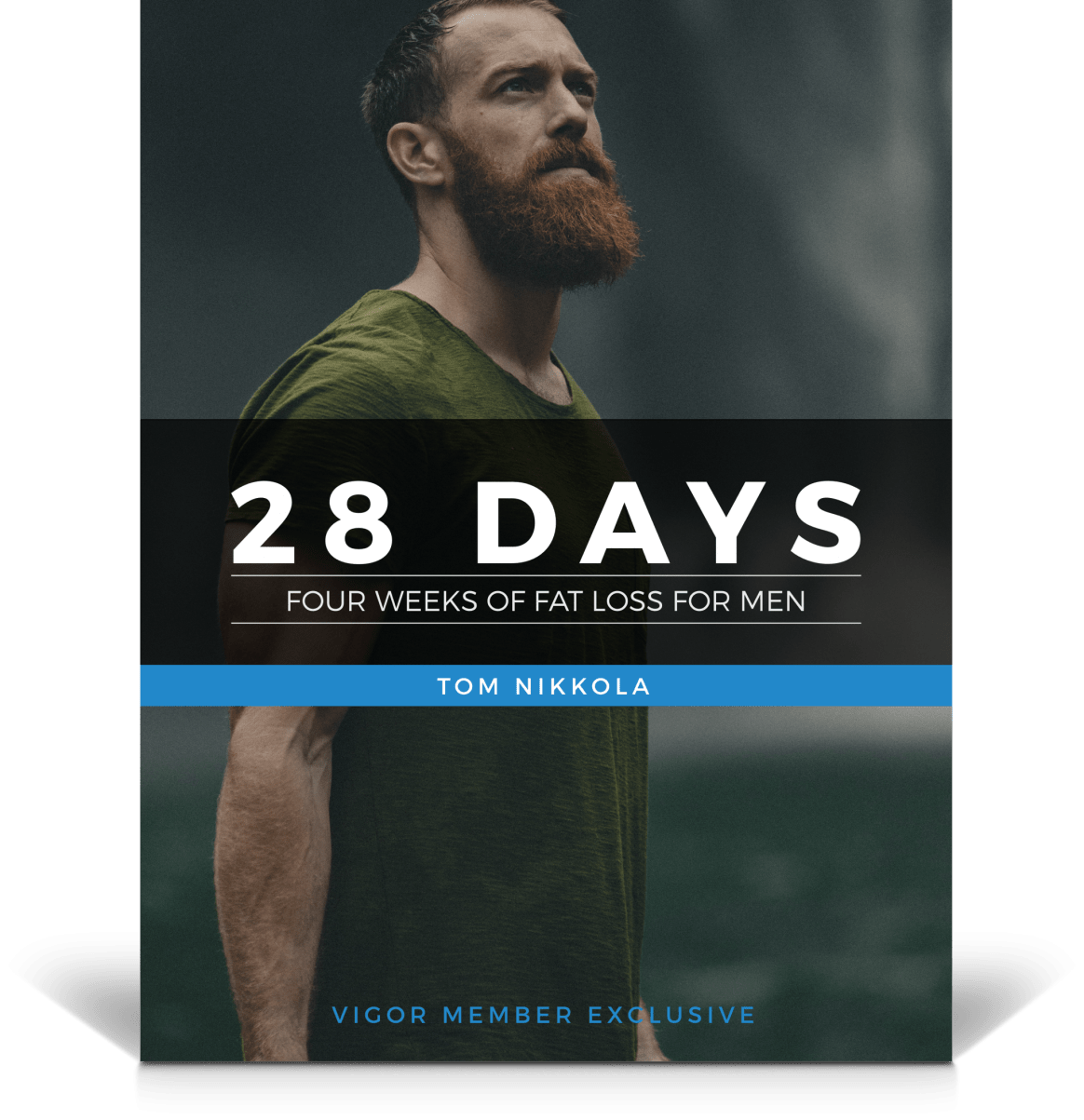 28 Days Cover For VIGOR page