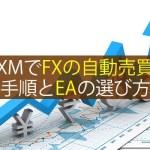 XMでFXの自動売買をする手順とEAの選び方を解説