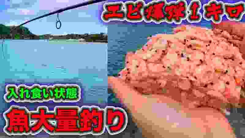 大量エビ爆弾1キロ沖縄の海に捲いて釣りしたら変な魚入れ食いで釣れすぎ状態にwww