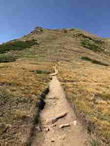 a trail of switchbacks to enhance the burn