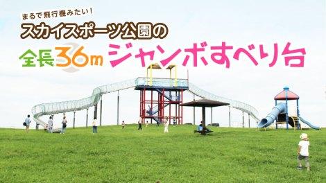 埼玉県スポーツ公園のジャンボすべり台