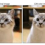 Pythonでカラー画像を圧縮する方法(少ない色数でオリジナルの色に近い画像を生成する方法)