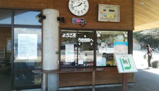 うさぎの島大久野島へのアクセス!島内移動や所要時間は?