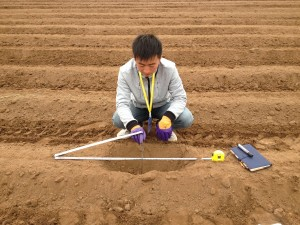 Measuring in the field.