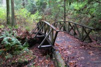 Wooden bridge in Stanley Park, Vancouver