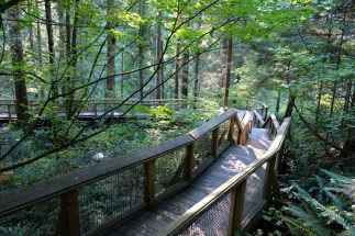 A wooden path at Capilano, Vancouver