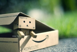 Danbo-Is-Home-by-Lady-Tori-578x395