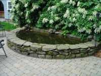 Landscape Design & Maintenance  Front Yard Ideas