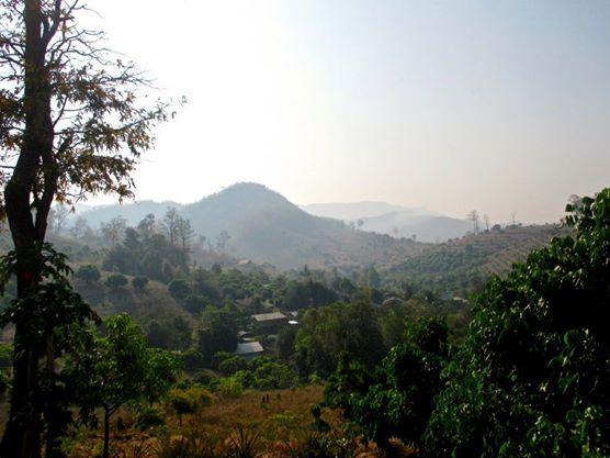 Hwai Tong Kaw Village