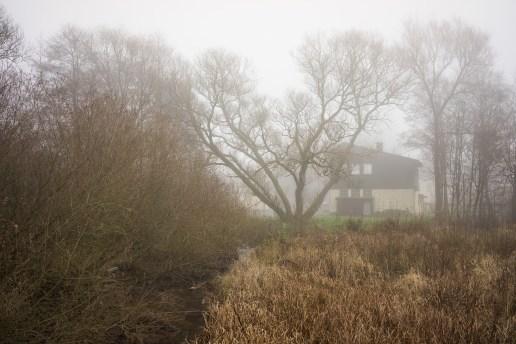 Fog, Westerwald.