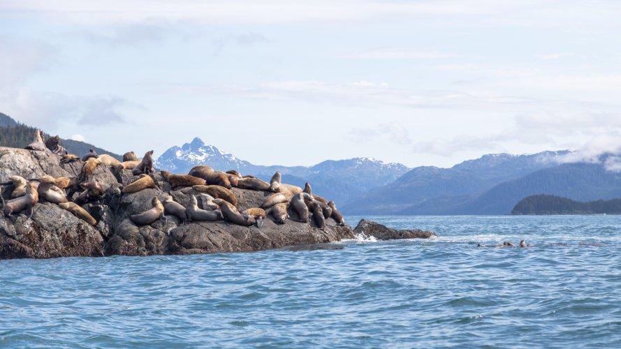 Tom Scherlis Alaska-0504