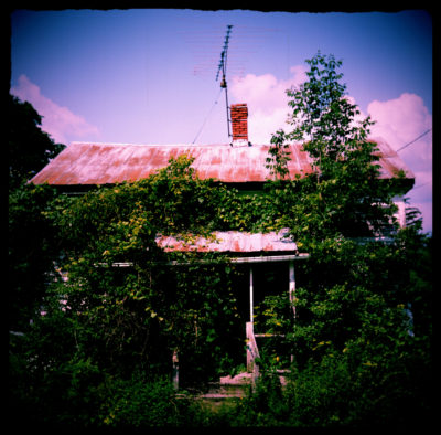 Old-House-Covered-In-Vines