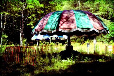 the-mushroom