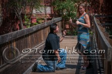 Amy + Apple Engagement Photos 5-3-2015 0065