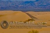 Glamis Dune Trip 11-11-11-220