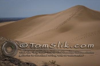 Glamis Dune Trip Cinco de Mayo 2012 0165