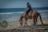 Horse Riding Imperial Beach Mexico Border 9-13-2015 0033