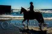 Horse Riding Imperial Beach Mexico Border 9-13-2015 0136