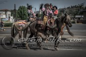 Lakeside Western Days Parade 4-23-2016 0062