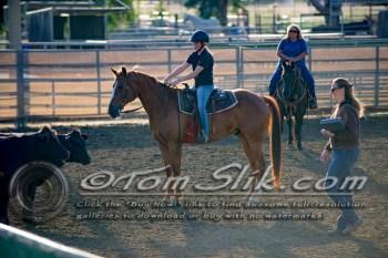 Lynn & Sam Team Cow Sorting 5-18-2016 0003