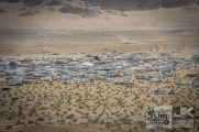 King of the Hammers 2017 0079