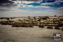 Tierra Del Sol Desert Safari 2018 0621