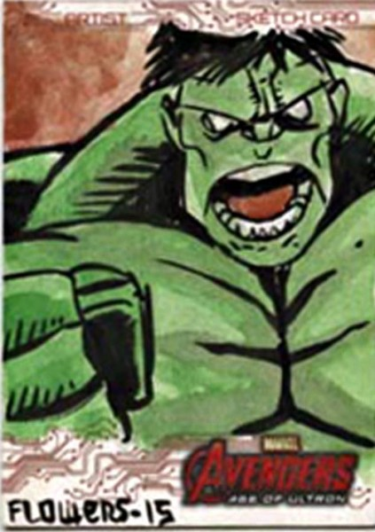 AVENGERS AGE OF ULTRON JASON FLOWERS SKETCH CARD Artist Great card to start your collection off with!