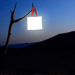 LuminAID-solar-inflatable-light-PackLite12_Tree