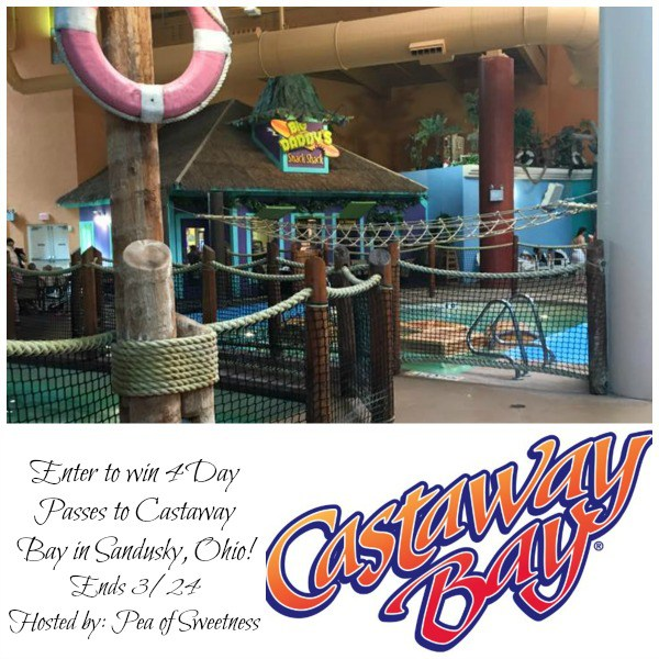 Win a set of 4 Day Passes to Castaway Bay at Cedar Point Ends 3/24 Good Luck from Tom's Take On Things
