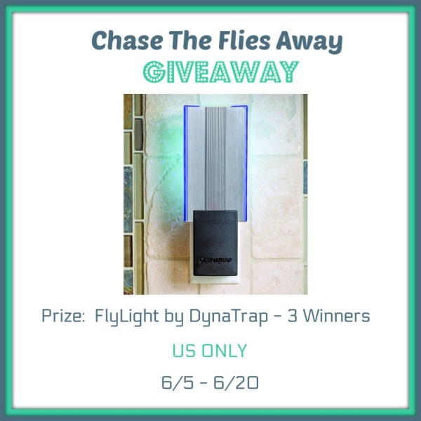Chase The Flies Away Giveaway - Win a DynaTrap Help get rid of those pesky flies in the house - Ends 6/20 Good Luck from Tom's Take On Things