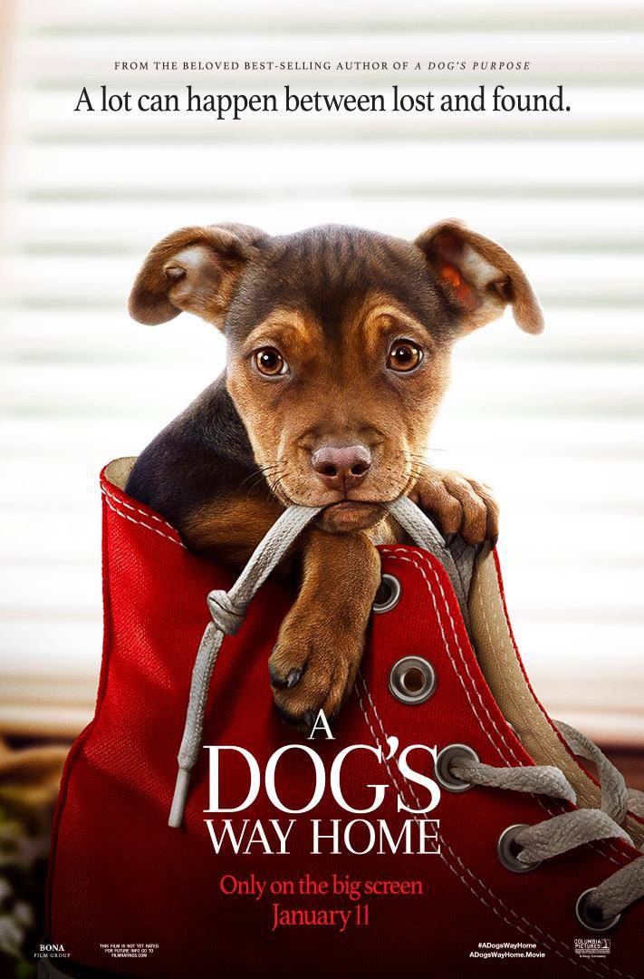 A Dog's Way Home Prize Pack Giveaway