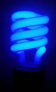 Picture of a Example of a blue-colored Compact Fluorescent Light Bulb in operation.