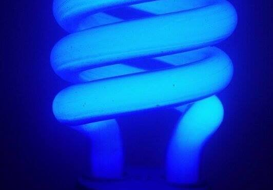 Compact Fluorescent Lamp CFL Pros and Cons