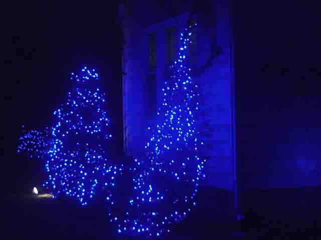 picture of blue outdoor led christmas lights house front bushes decorated