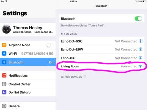Picture of the iOS Bluetooth Found Devices list, showing connected Google Home Living Room speaker.