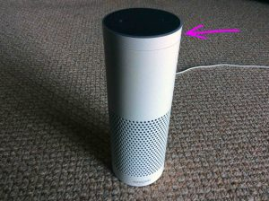 Picture of the volume ring, pointed at by the purple arros, on the Amazon Alexa Echo Gen 1 smart speaker.