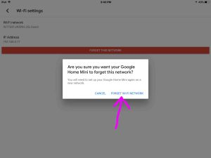 Picture of the Google Home app on iOS, displaying the -Forget This Wi-Fi Network- confirmation dialog.