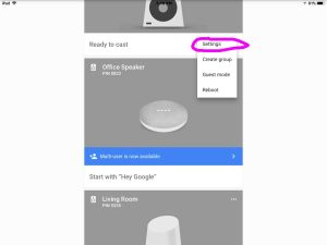 How to pair JBL Clip 3 with Google Home speakers. Picture of the Google Home app on iOS, with a Google Home Mini device control menu displaying, with the Settings Item in that menu highlighted.