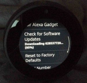 Picture of the -Device Options- screen, with the -Downloading Software-95 percent done- message displaying.