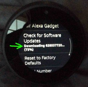 Picture of the -Device Options- screen, with the -Downloading Software- message highlighted. Updating Firmware on Echo Spot.