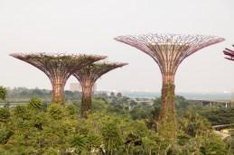 Singapore_GardensBay_0809