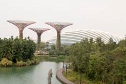 Singapore_GardensBay_0835