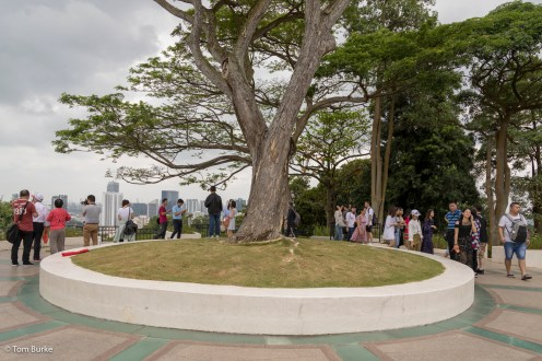 Mount Faber peak and people