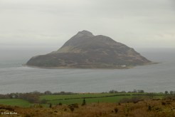 Holy Isle through the murk