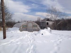 SnowyGreenhouse_Feb2015