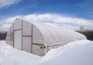SnowyHT_Feb2015best