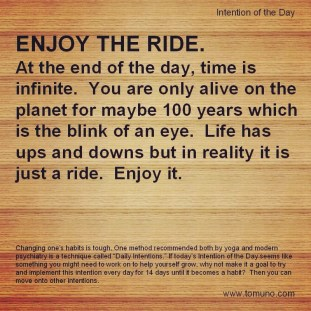 DI32_Enjoy The Ride
