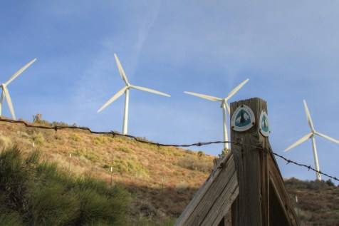 PCTWindmills_09
